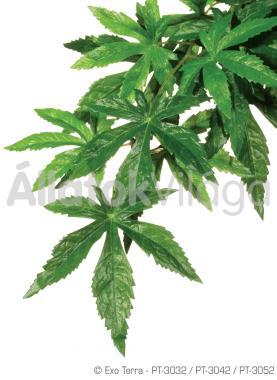 Exo-Terra Hanging Rainforest Plants Abuliton Small kúszó esőerdei műnövény kicsi PT3032