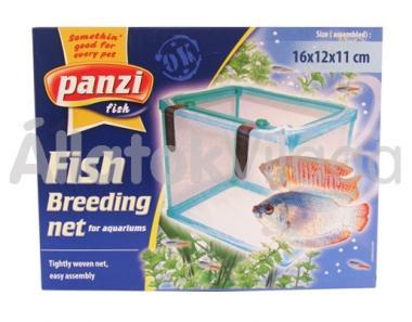 Panzi Szülő-szoba-Ikráztató akváriumba