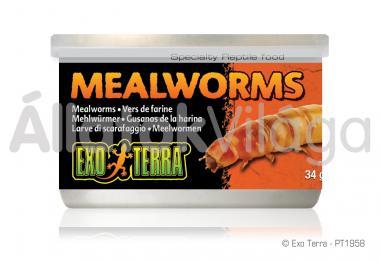Exo-Terra Mealworms konzerv lisztkukac 34 g-os PT1958