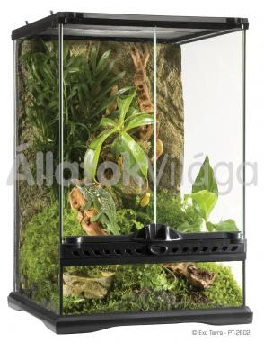 Exo-Terra Natural Terrarium Mini/Tall terrárium mini/magas 30x30x45 cm-es PT2602