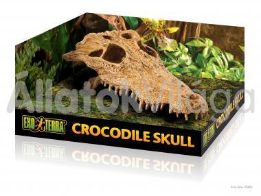 Exo-Terra Crocodile Skull krokodil koponya odú PT2856