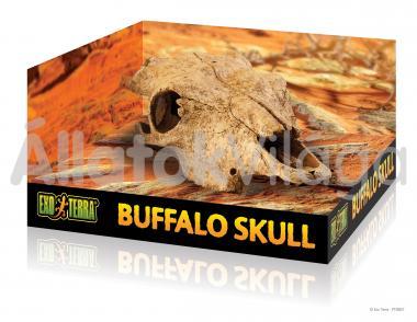 Exo-Terra Buffalo Skull marha koponya odú PT2857