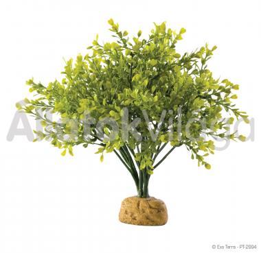 Exo-Terra Rainforest Plants Boxwood Bush esőerdei műnövény PT2994