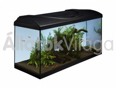 Diversa Startup 80 komplett akvárium szett szögletes 112 literes 80x35x40 cm-es fekete
