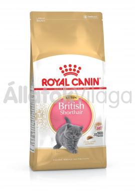 RoyalCanin Kitten British Shorthair kölyök macska eledel száraz 10 kg-os