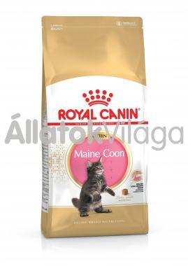 RoyalCanin Kitten Maine Coon kölyök macska eledel száraz 2 kg-os