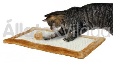 Trixie kaparó szőnyeg 55x35 cm-es barna 4325