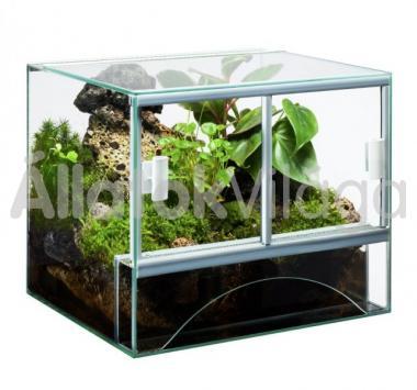 Diversa üveg terrárium 36 literes 40x30x30 cm-es