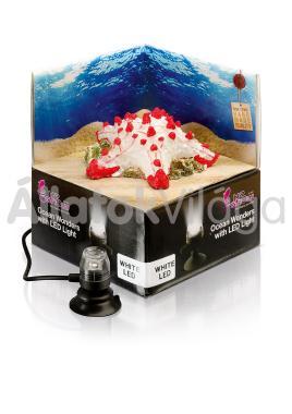 Hydor H2shOw dekoráció Ocean Wonders tengeri csillag + fehér LED